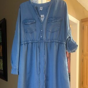 Denim Maternity Dress